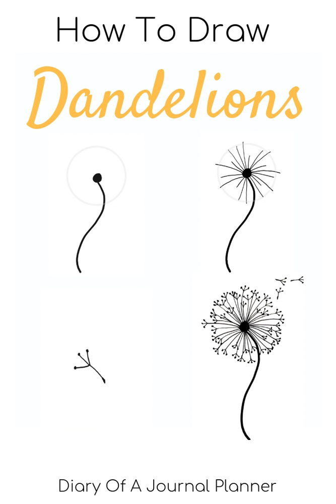 Find out how to draw a dandelion. We love flower doodles and the dandelion doodle is a simple drawing to try.