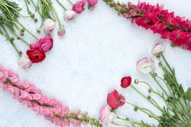 flower bullet journal theme