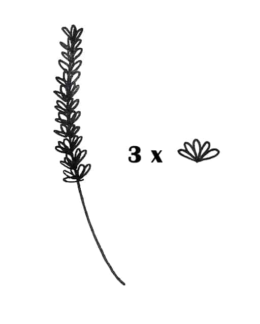 draw lavender doodles