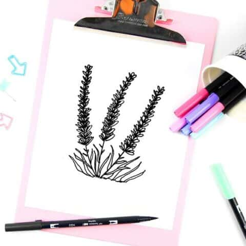 How to make lavender drawing doodles