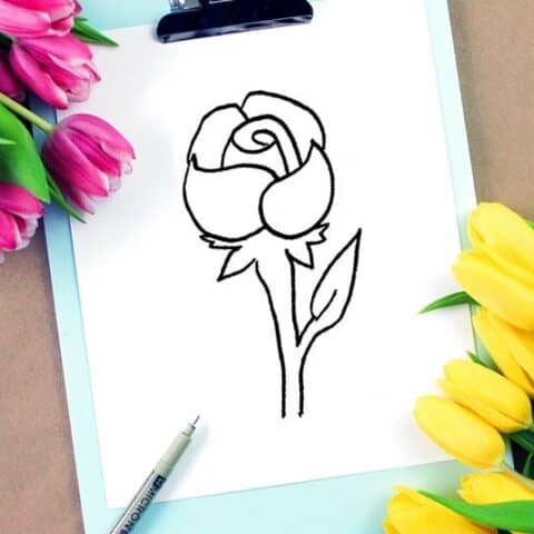 How to draw a rose step by step tutorial for beginners