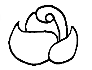 simple way to draw a rose