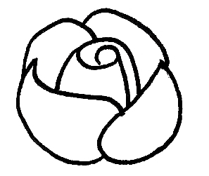 how do you draw a rose step by step